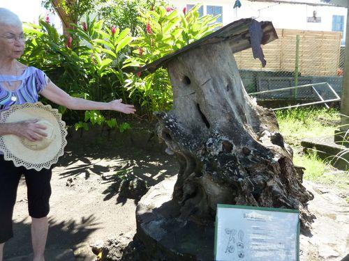 Ecomusée rucher ancien (2)