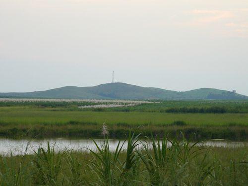nkayi-lac-km4-roseaux