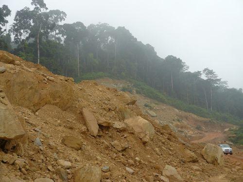 RN1-brouillard-rochers