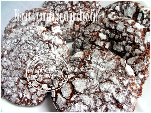biscuits chocolat 001
