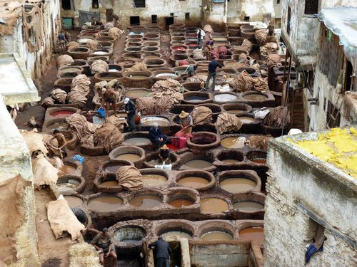 16 Fez Tanneries