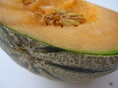 Magret de canard et tranches de melon (2)