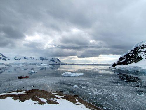 Antarctique 2440
