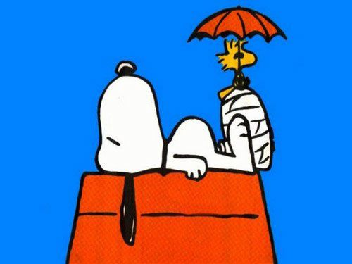 snoopy-chiens-charlie-brown.jpg