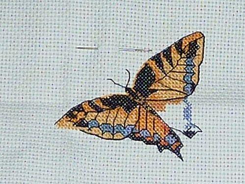 papillons_2.jpg
