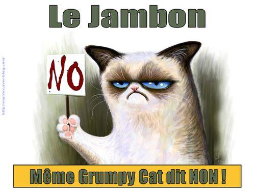 Grumpy Cat - le jambon