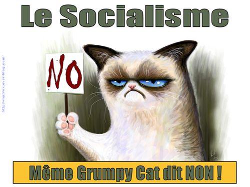 Grumpy Cat - le socialisme