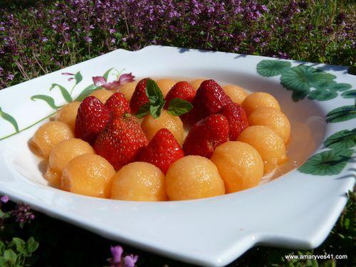soupe de melon 006
