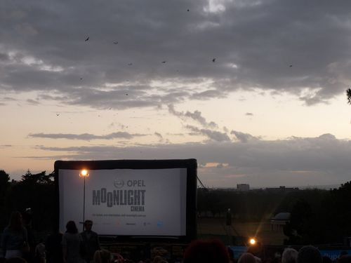 Moonlight-Cinema.JPG
