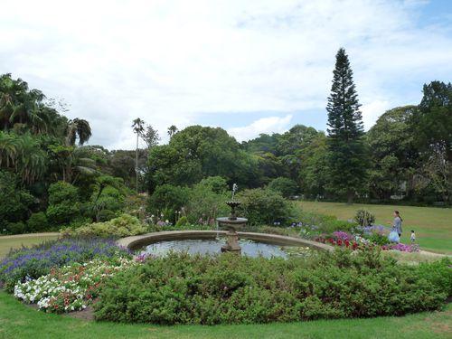 Vaucluse-H-jardin.JPG