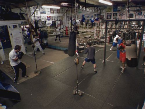 article-boxing-gym-2.jpg