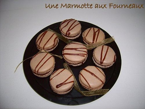 macaronpralinoiseMarmotte.jpg