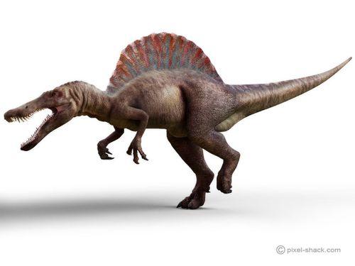 Spinosaurus--insim-blog-2014.jpg