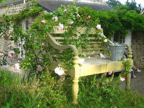 jardin-banc-roses.jpg