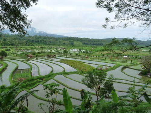 08-Padangbai-Tirtagangga 9
