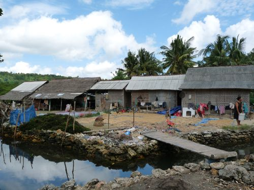 10-Nusa Lembongan-ferme de recolte d algues