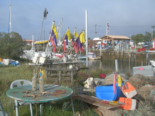 bassin toussaint 025