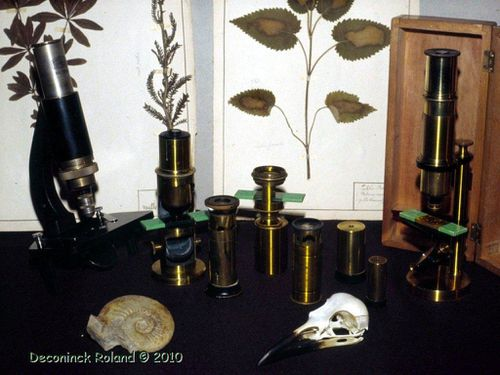 collection microscopes anciens 1