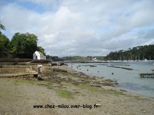 Bilo et Loba en Bretagne55