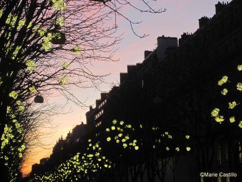 avenue-Montaigne-Noel-2011-Marie-Castillo.JPG