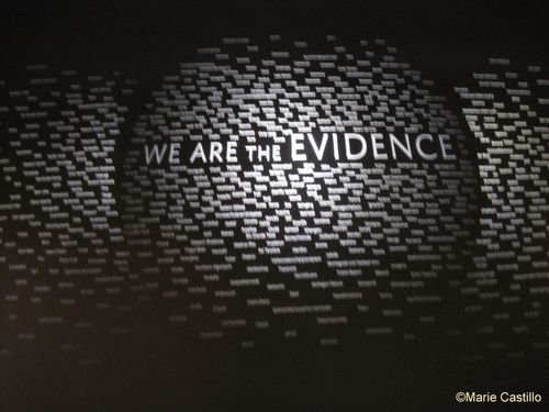 we-are-the-evidence-DC.JPG