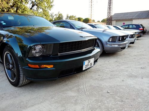 roquefortlespinsmustang28082012 007