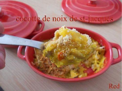 cocotte st-jacques3