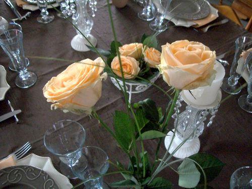 Nouvelle-exposition-table-aux-roses-017.jpg
