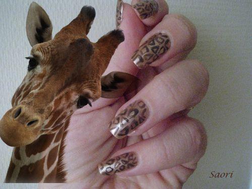 Girafe6