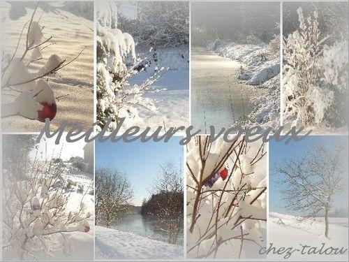 neige-flou-meilleurs-voeux-copie-1.jpg