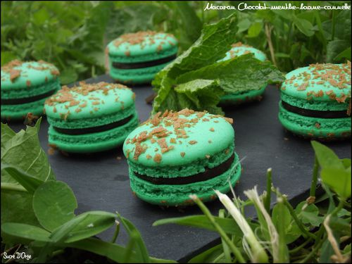 Macaron-Menthe-chocolat-banane-cannelle--4-.JPG