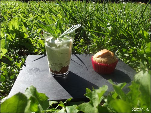 Recette-Mousse-The-vert-Matcha--Speculoos--Pistache-JPG