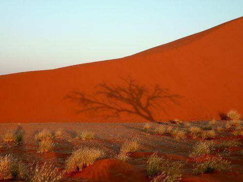 06 Sesriem - Dune 243