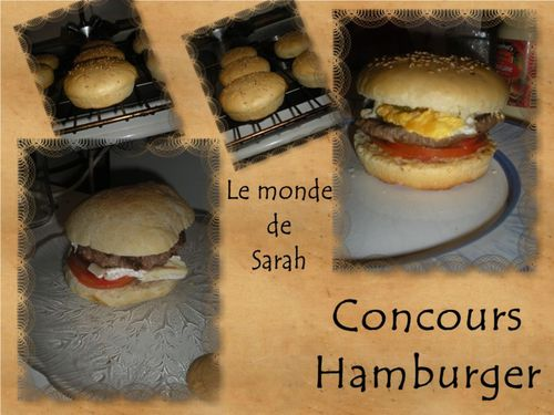 hmburger1-copie-1