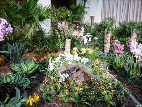 Orchidees-Menton-2011--10-.JPG