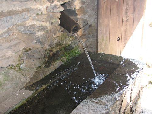 2011.04.15 Le Mt Gerbier de Jonc - La ferme et la source6