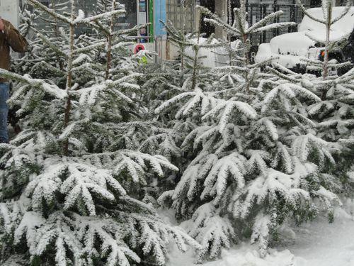 2010-19-12 caen sous le neige 022