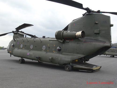 Chinook-Laurent--1--copie.jpg