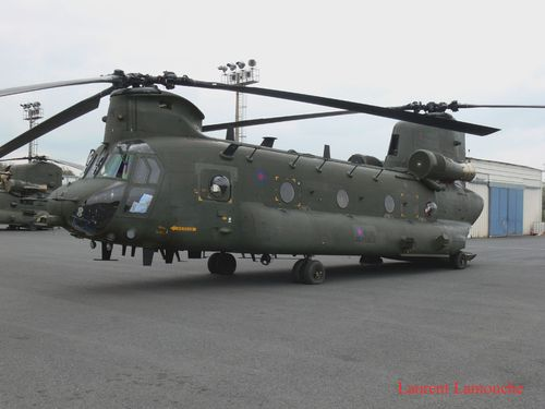Chinook Laurent (10) copie
