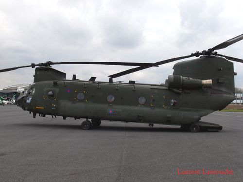 Chinook-Laurent--2--copie.jpg
