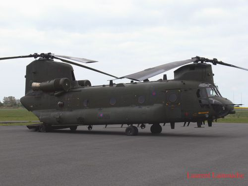 Chinook-Laurent--4--copie.jpg