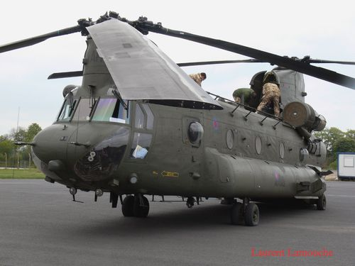 Chinook-Laurent--7--copie.jpg