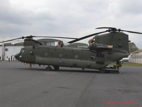 Chinook-Laurent--8--copie.jpg