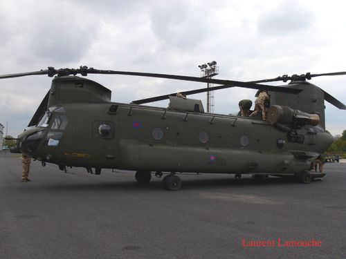 Chinook-Laurent--9--copie.jpg