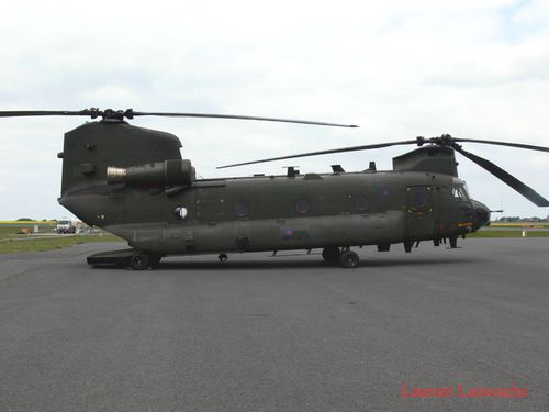 Chinook-Laurent-copie.jpg