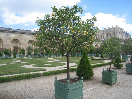 Versailles 0447