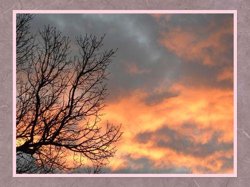 ciel-d'hiver-copie-1