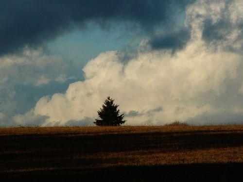Cumulus Factus (2)