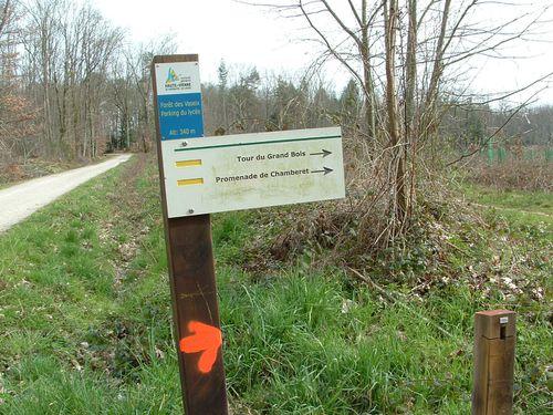 1-4-Parcours Tour du grand Bois et promenade de chamborêt