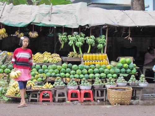 birmanie 1050